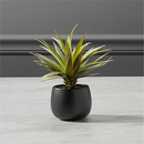 Online Designer Combined Living/Dining faux potted succulent with black pot