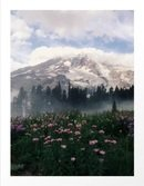 Online Designer Combined Living/Dining Mt Rainier Art Print