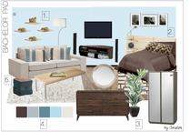 Bachelor Pad Living Room/Bedroom Design Christine M. Moodboard 1 thumb