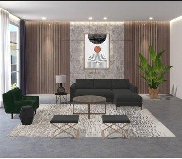 Online design Modern Living Room by Liz C. thumbnail