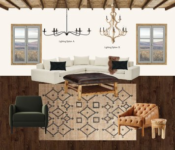 Online design Traditional Living Room by Emily P. thumbnail