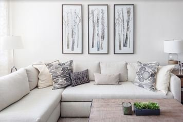 Online design Transitional Living Room by Sonia C. thumbnail