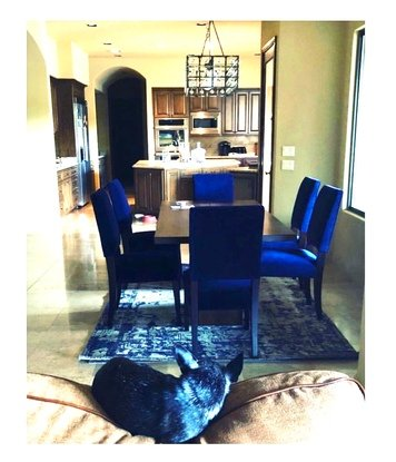 Online design Transitional Dining Room by Linde P. thumbnail