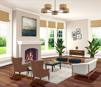 Online design Transitional Living Room by Liz C. thumbnail