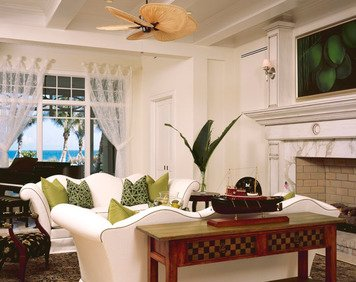 Online design Transitional Living Room by Susan C. thumbnail