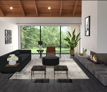 Online design Contemporary Living Room by Liz C. thumbnail