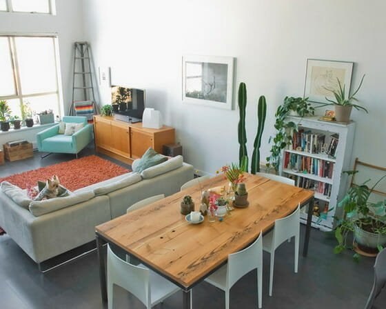 decorating with roomies Eclectic-Living-Room-and-Dining-Room-Decorating