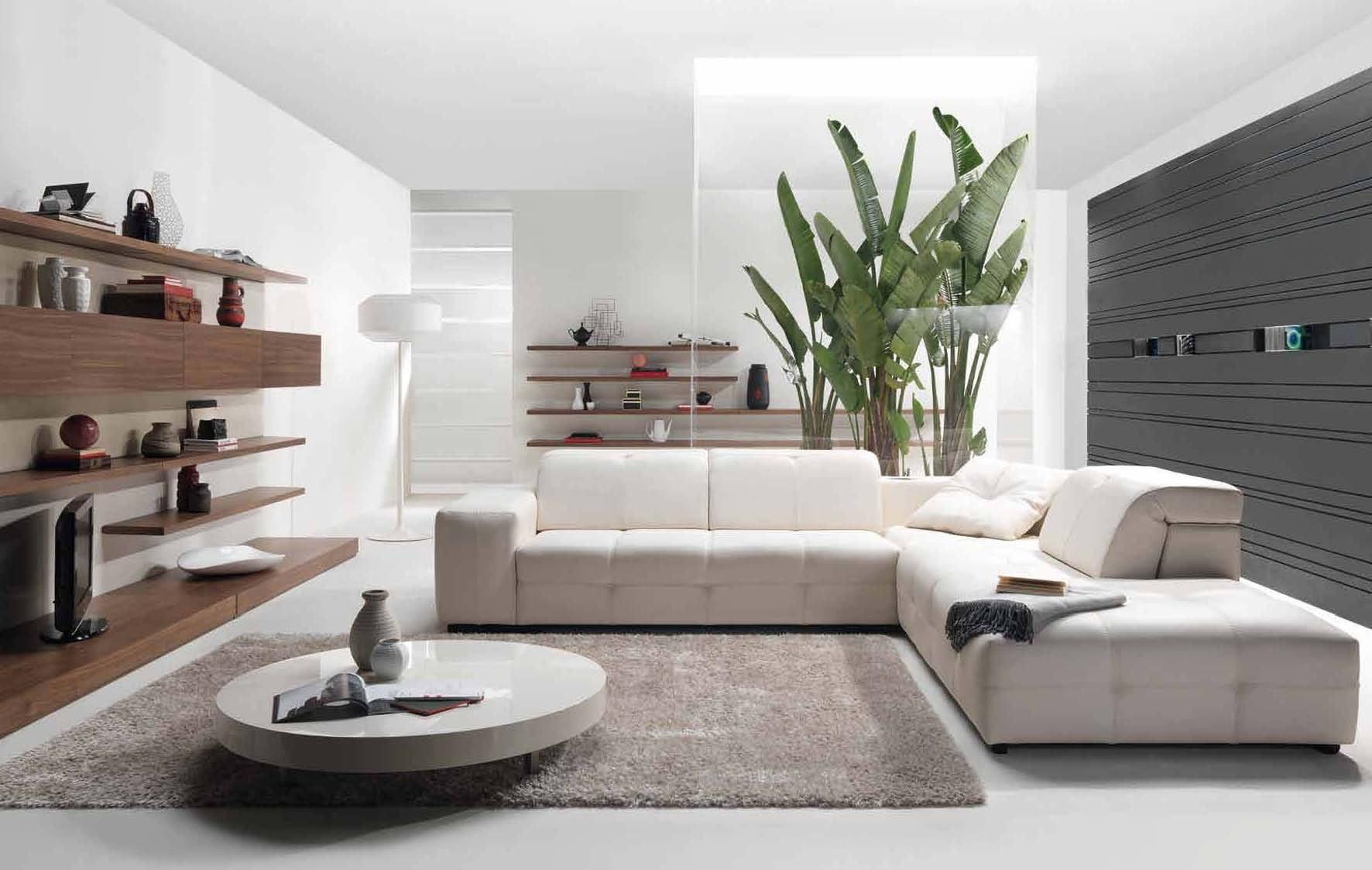 modern-minimalist-style-living-room-decorating-with-shaggy-rug-best-interior-design-ideas