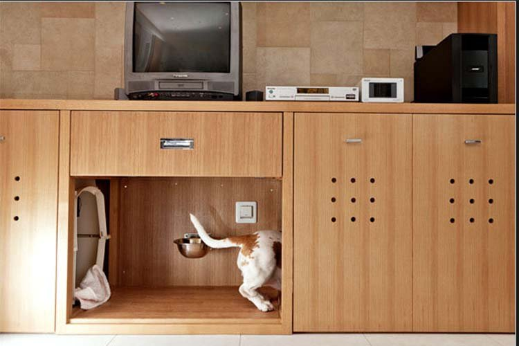 pet-friendly-interior-design-2