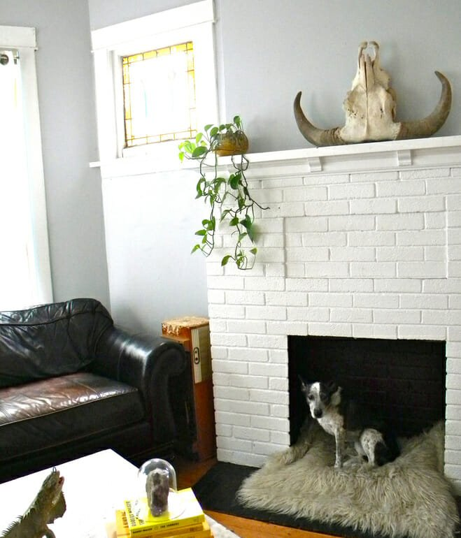 fireplace-dog-bed