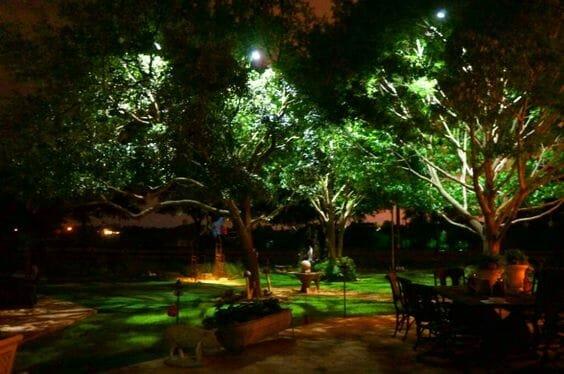 top backyard lighting trends moonlighting