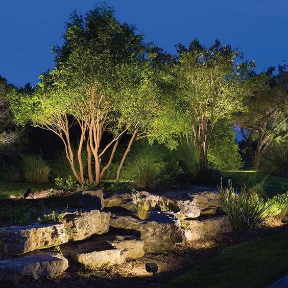 top backyard lighting trends up lighting tree