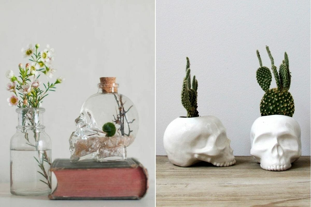 Skull planters and a terrarium as elegant halloween decor