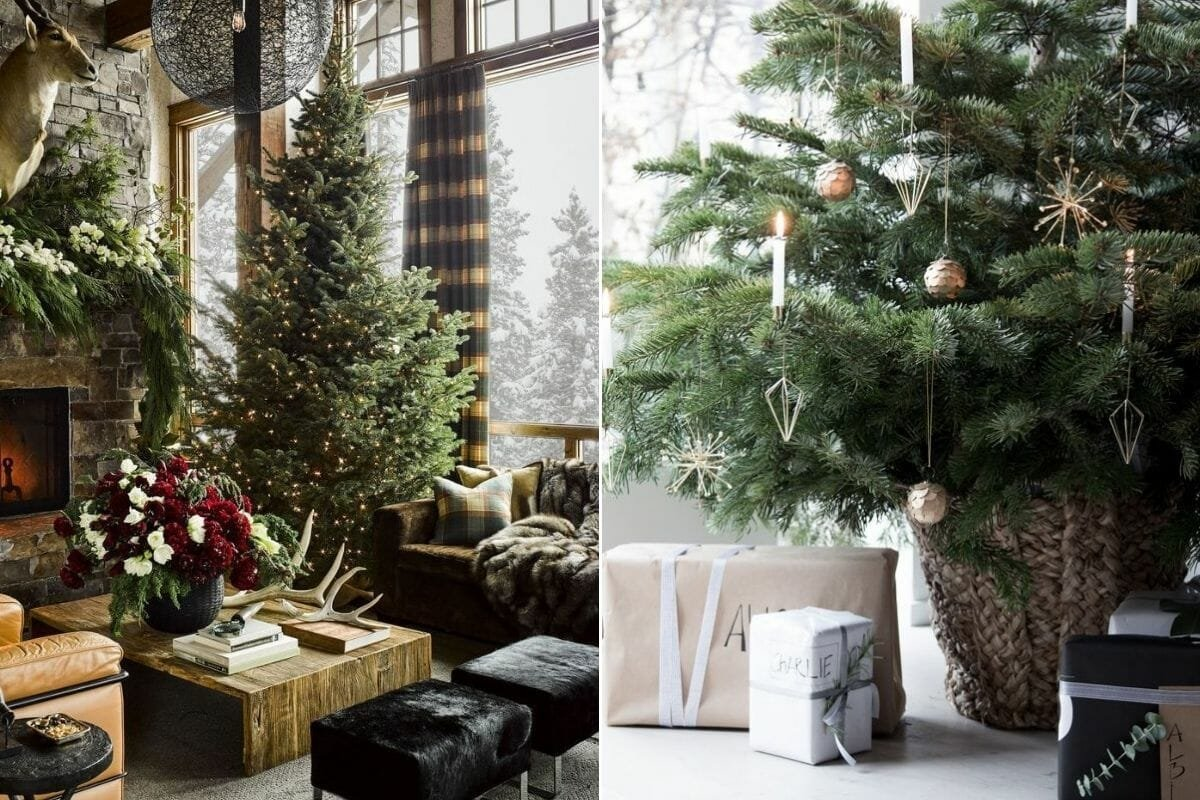 Large and lush Christmas tree with Christmas tree decorations