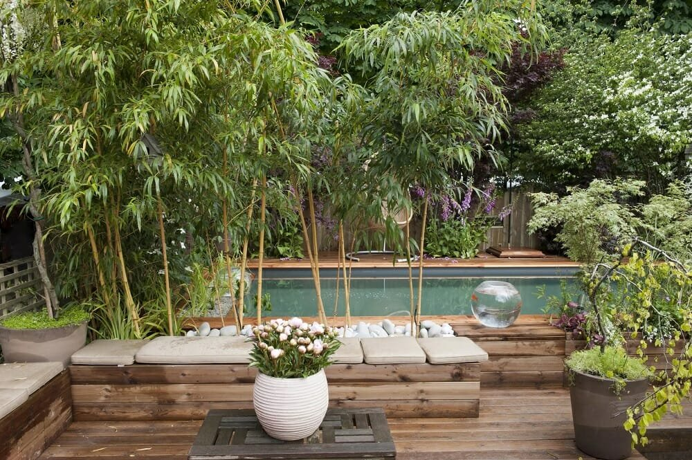 Plants around the pool - bamboo as pool decorating ideas