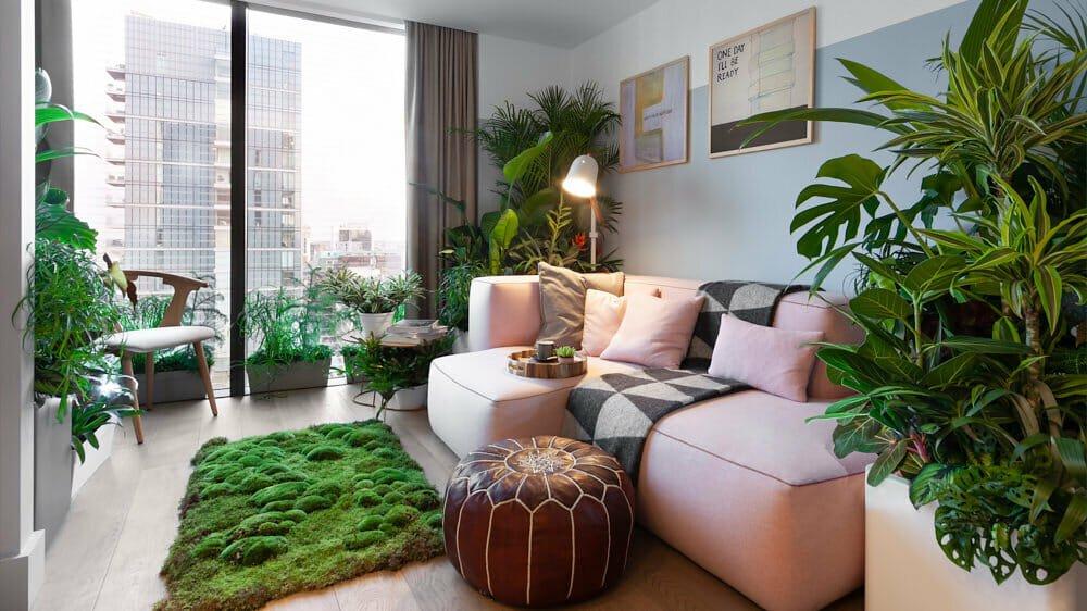 Indoor plant design - Invincible House Plants