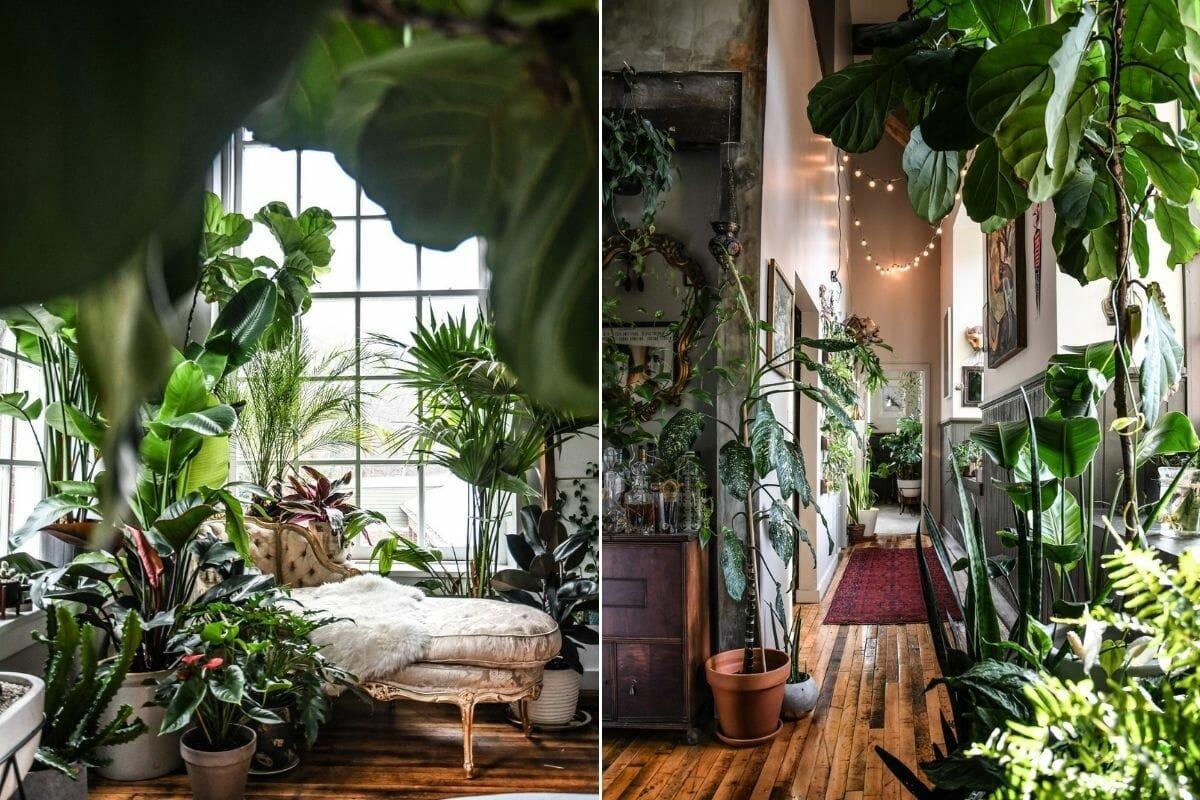 Lush interior filled with indoor plants design - Coveteur