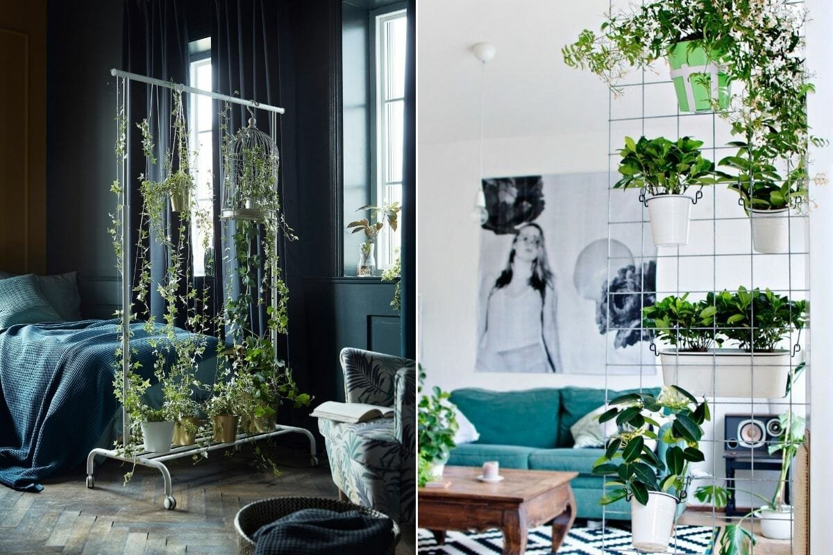 Plants in interior design as room dividers