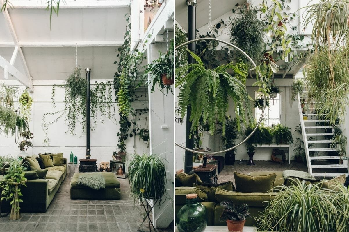 house plants interior design - Broadsheet