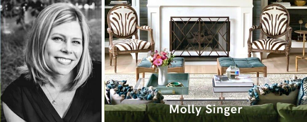 Houzz interior designers Pittsburgh Molly Singer